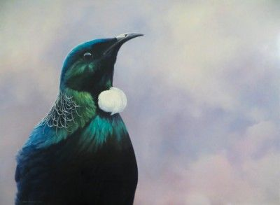 Jane Sinclair - New Zealand painter Jane Sinclair shares a deep affinity with the endemic birds that inhabit the stunning landscapes of her homeland. Captured in both oils and watercolours, they are a reminder of the fragility of the environment.