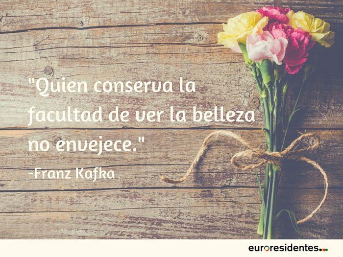 Frases de Franz Kafka                                                                                                                                                                                 Más
