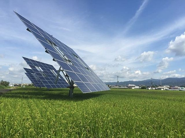 Thibaultfrisson Dynamic Agrivoltaic Power Plants With Rice Fields Dual Axis 1000m2 50 Kw Typhoon Resistant Japan 201 Solar Solar Patio Power Plant