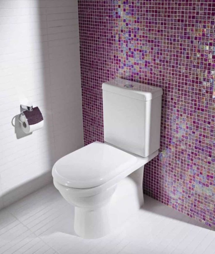 An Efficient Bathroom Dual Flush Toilet