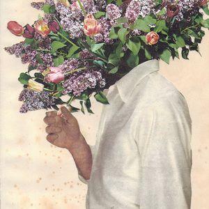 Say It With Flowers  Joe Webb