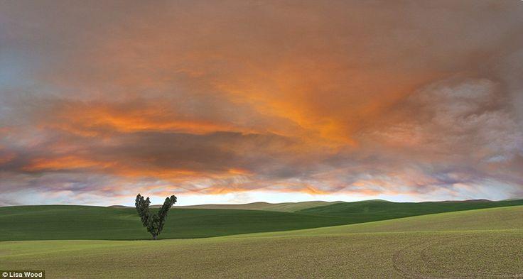 Palouse grasslands, USA