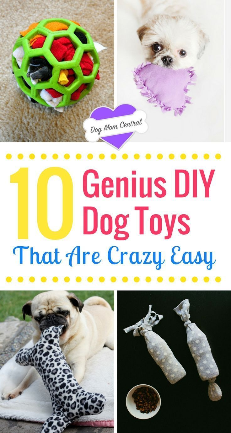 Dogs adore these DIY dog toys. The tutorials are insanely easy and create homemade dog toys that keep your pup occupied and engaged.