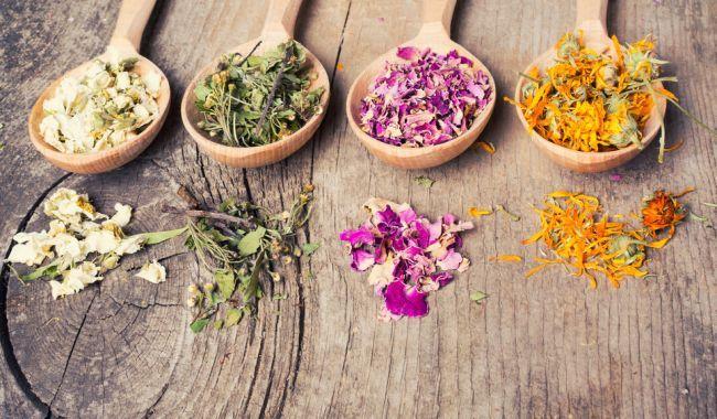 Zoznam vedľajších efektov liekov je nekonečný: Stavte aj vy na zázračnú silu byliniek!