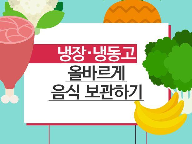 냉장고 속 음식 올바르게 보관하는 '꿀팁' [인포그래픽] | 비주얼다이브