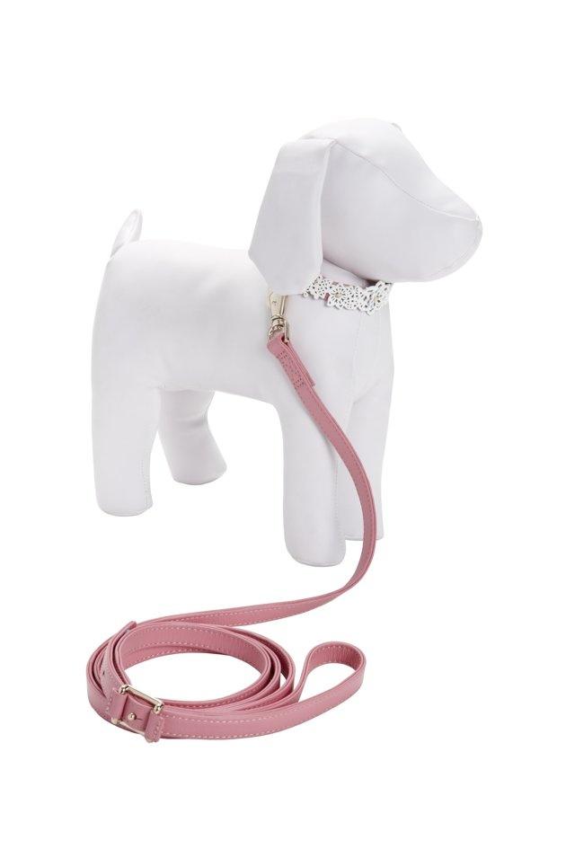 Oscar de la Renta Pet Collar and Leash    $39.99 -From The Target x CFDA x Neiman Marcus Collab
