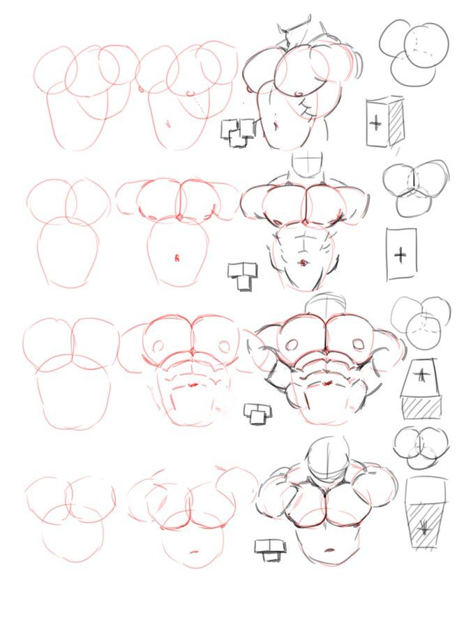 Drawing#Reference#Tips#Torso#Anatomy | Draws in 2019