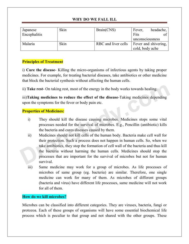 Pin by Divi Goyal on notes Science notes, Bacterial