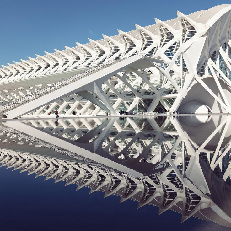 Santiago Calatrava's City of Arts and Sciences Through the Lens of Photographer Sebastian Weiss