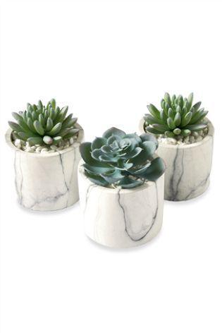 Green Set Of 3 Marble Effect Succulent Pots #artificialplantsbedroom | Artificial  Plants Living Room Crate And Barrel In 2018 | Artificial Plants, Plants, ...