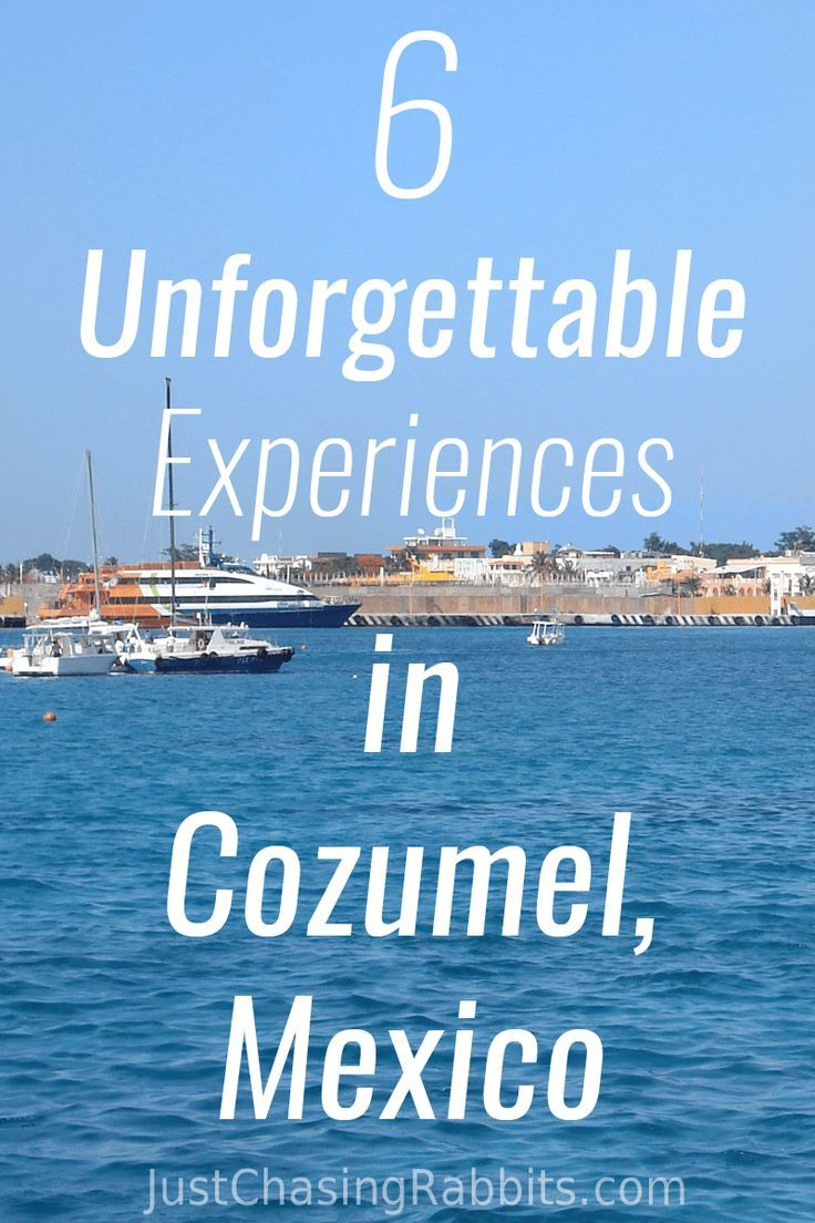6 Unforgettable Experiences In Cozumel Cozumel Mexico Cruise