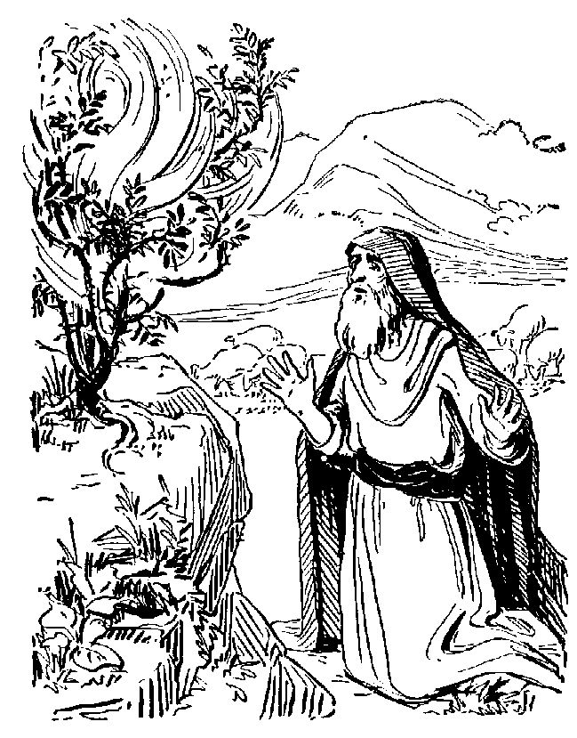 MOSES and the Burning Bush That Did Not Burn by Linda Sue
