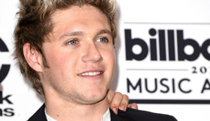 Niall Horan's Secret Agent Nomination, 'Unofficial 1D Peacekeeper'