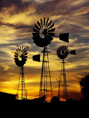 Windmills at Sunset in Penong, Australia Photographic Print by Richard I'Anson at Art.com