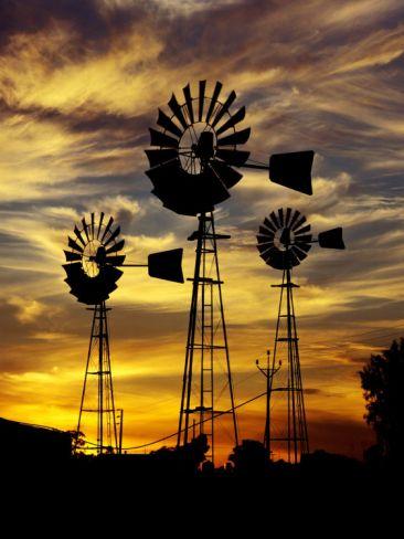 Windmills at Sunset in Penong, Australia Photographic Print by Richard I'Anson at Art.com