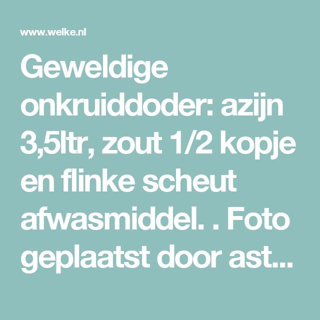 Geweldige onkruiddoder: azijn 3,5ltr, zout 1/2 kopje en flinke scheut afwasmiddel. . Foto geplaatst door astridhl69 op Welke.nl