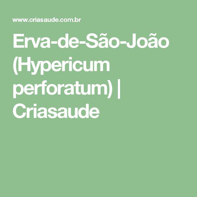 Erva-de-São-João (Hypericum perforatum) | Criasaude