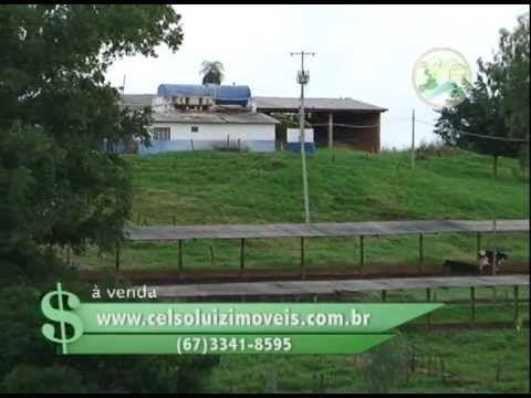 FAZENDA À VENDA EM CAMPO GRANDE / MS COM 2.700 HECTARES.