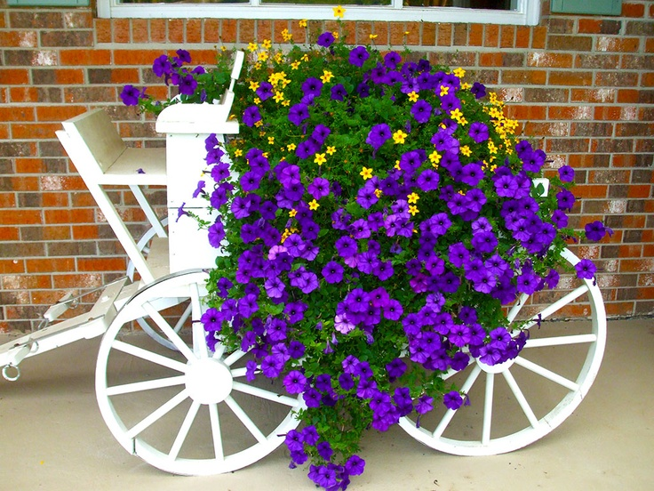An Old Wagon Filled With Cascading Purple And Yellow Flowers