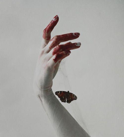 weißi roti blut schmetterling hand