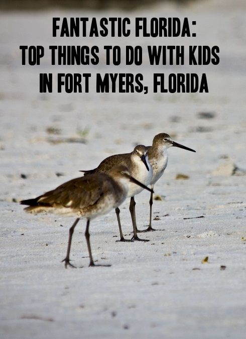 Fort Myers with kids, Florida | Vacation Ideas | Florida Vacation | Family Vacations Florida