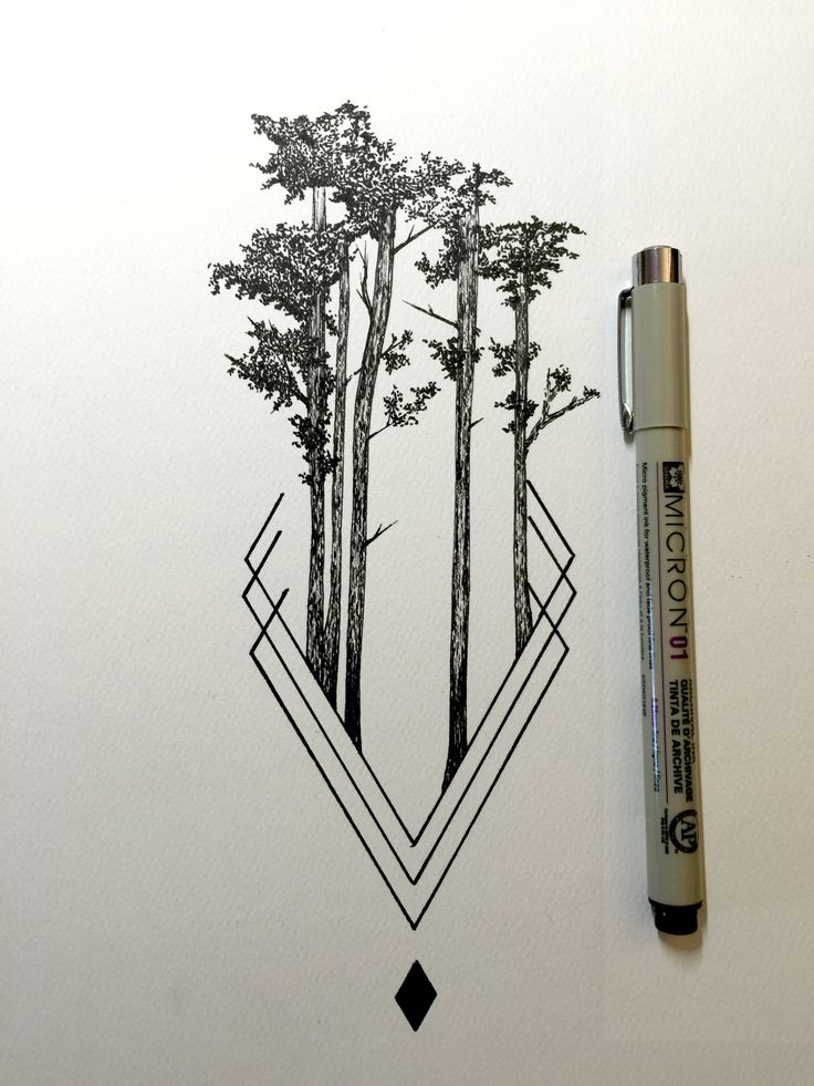 best 25 tree drawings ideas on pinterest trees drawing