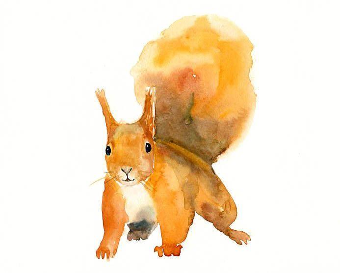 Digitaldruck - squirrel - ein Designerstück von dimdimini bei DaWanda
