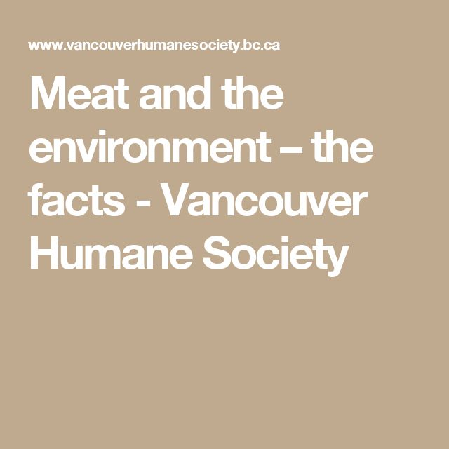 Meat and the environment – the facts - Vancouver Humane Society