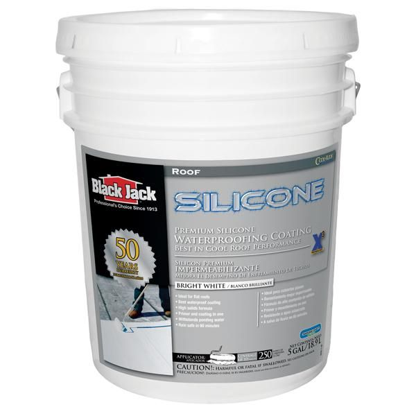 Black Jack Eterna Kote Silicone Roof Coating Roof Coating Jack Black Liquid Roof