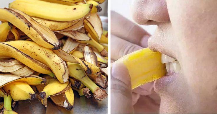 El plátano nos puede ayudar a mejorar los síntomas de la depresión así como los del síndrome premenstrual. También son muy adecuados para calmar los nervios en momentos de estrés o ansiedad.El plátano es una de las frutas más consumidas en todo el mundo, pues su delicioso sabor y sus múltiples propiedades lo han hecho merecedor de ser parte de la dieta de la mayoría de las personas.Este fruto se caracteriza por ser rico en hidratos de carbono, lo que hace que sea una de las mayores fuentes…
