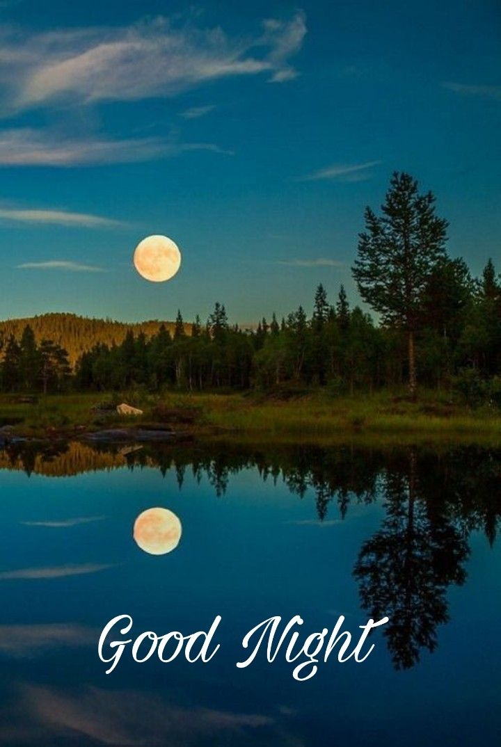 good night sweet dreams | Good night sweet dreams, Good night image,  Romantic good night