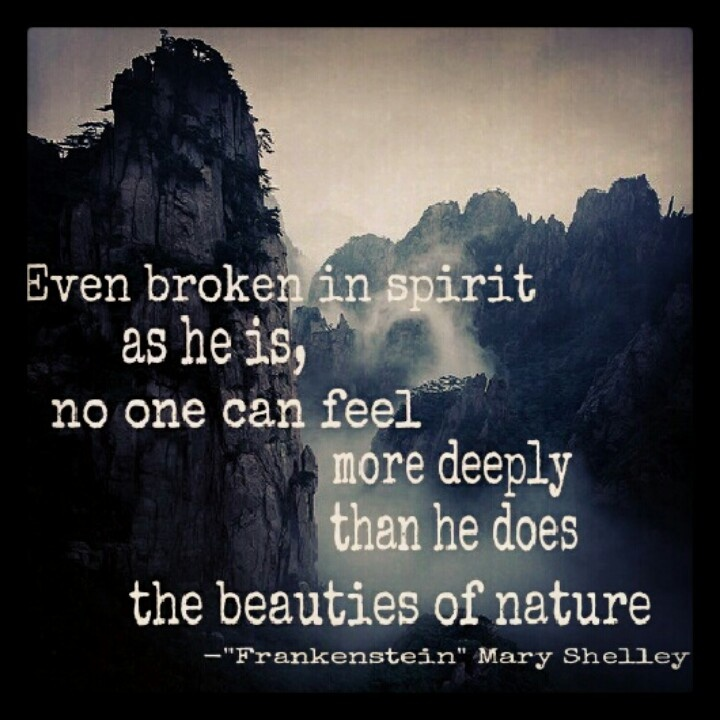 Mary Shelley's Frankenstein is amazing! A definite must read!!