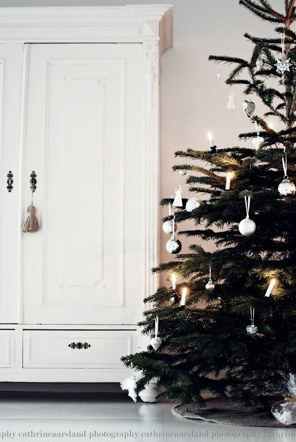 Minimalistic: considering doing this, this year--except with peacock feathers and blue bulbs