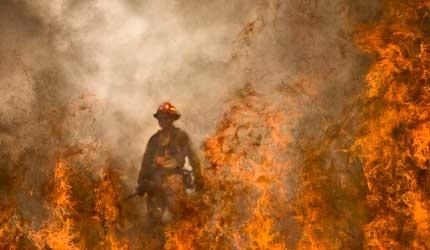 wildland fire - Bing Images