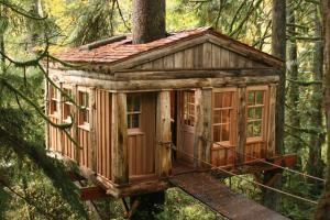 Seven cool tree houses around the world that you can visit and rent for a night, a week, or just for a dinner. Located in forests, tiger preserves, and next to the sea, these tree houses are ideal for anyone looking for a vacation that's a little out of the ordinary.