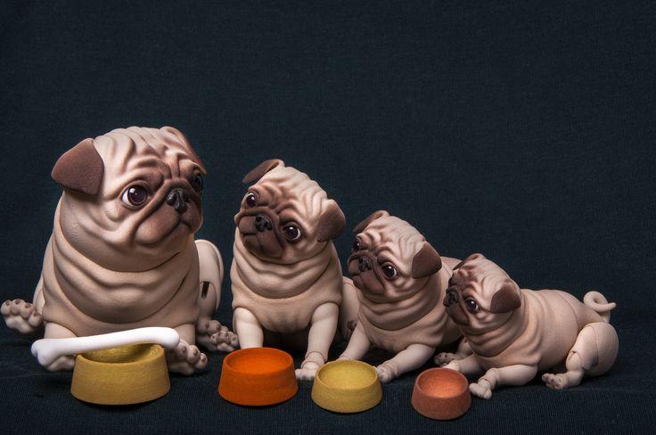 DSC_1372 | by BJD Pets (dolls.evethecat.com)