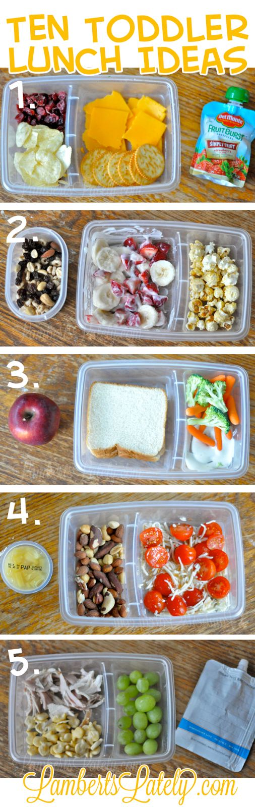 Ten (Quick and Easy) Toddler School Lunch Ideas (Brought to you by Del Monte) #ad #BH #squeezeorspoon