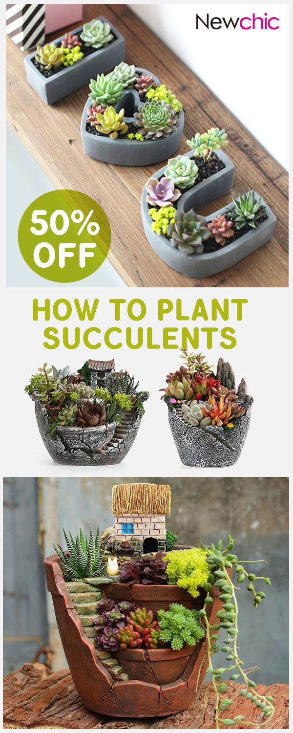 Click to SHOP] Home Decor Ideas -- Creative Flower Pots#newchic