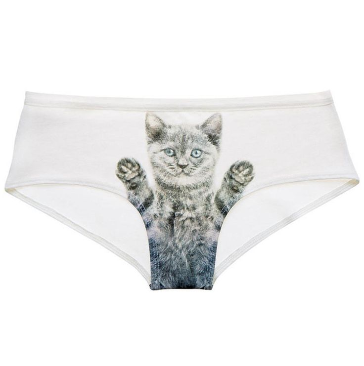 Naja Miss Galour Cheeky Knicker   cat lady underwear goals