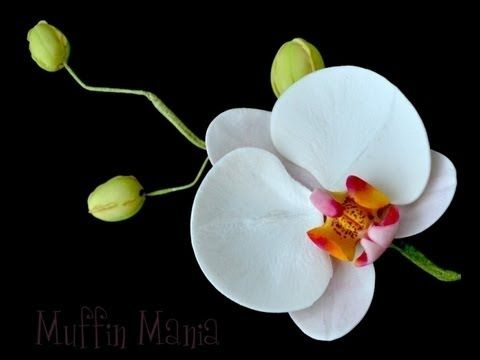 Orchidea  gum paste tutorial,orchidea gum paste flower tutorial
