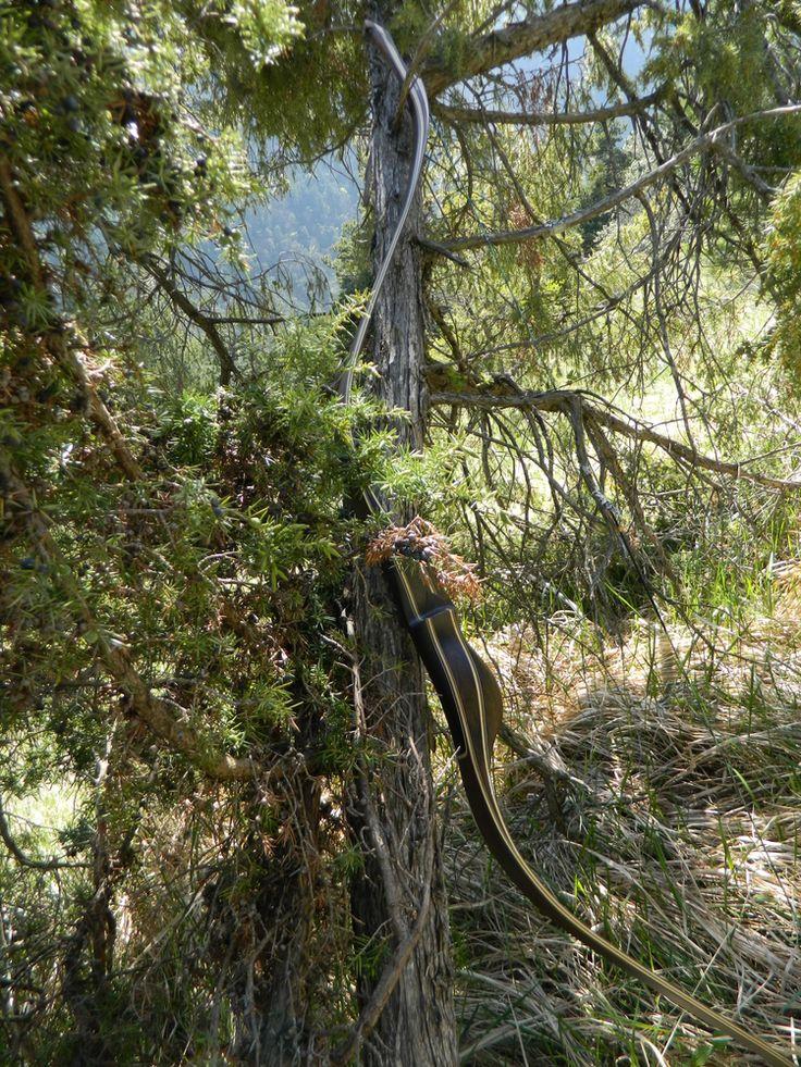 Les photos du Boréal, l'arc de chasse - Padawan Archerie |