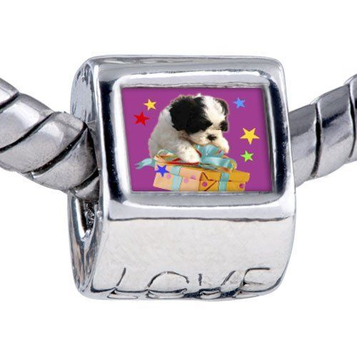 Pugster Bead Poodle Present Photo Love European Charm Bead Fits Pandora Bracelet Pugster. $12.49. Bracelet sold separately. Unthreaded European story bracelet design. It's the photo on the love charm. Fit Pandora, Biagi, and Chamilia Charm Bead Bracelets. Hole size is approximately 4.8 to 5mm