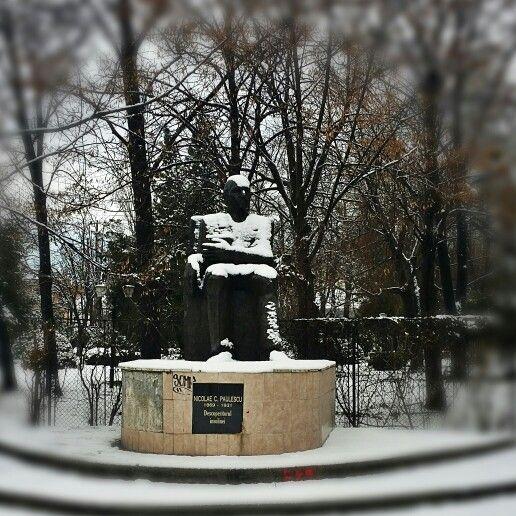 Nicolae Paulescu, the discoverer of insuline