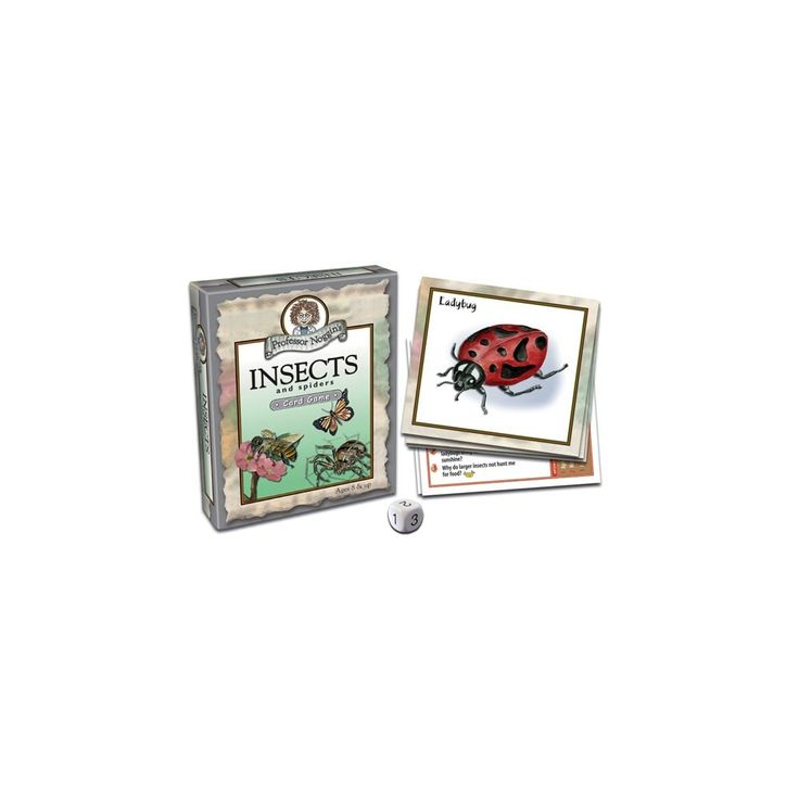 Insects and Spiders Card Game