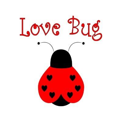 17 Best images about Ladybug Love/Inspiration on Pinterest ...