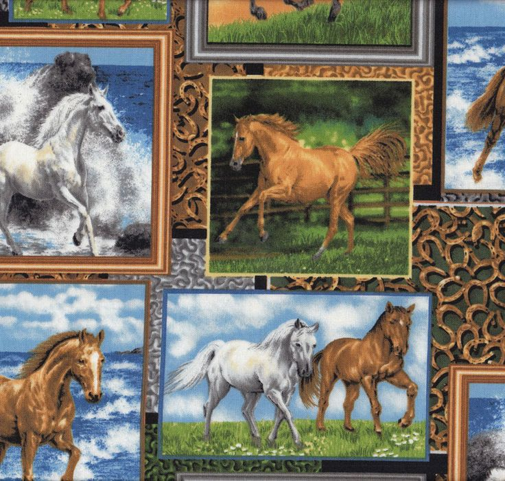 Horses in Frames Horseshoes Farm Animal Country Quilt Fabric - Find a Fabric - Available to purchase in Fat Quarters, Half Metre, 3/4 Metre, 1 Metre and so on.