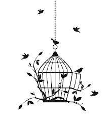 Birdies galore