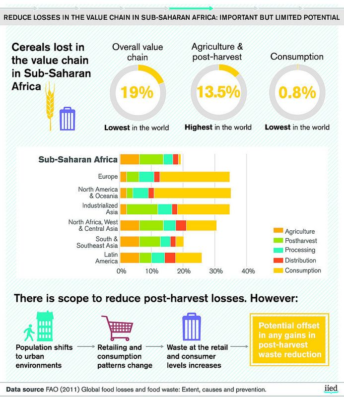 Reduce losses in the value chain in sub-Saharan Africa: important but limited potential | by iied.org