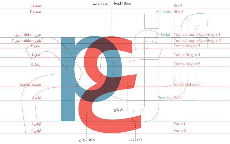 Arabic-type-anatomy-6