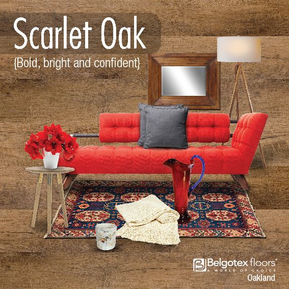 Oakland - Scarlet Oak
